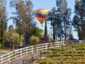 A hot air balloon descends over Temecula's Wine Country -- Kunal Mukherjee/Flickr